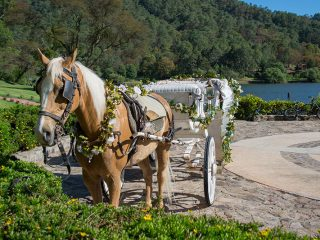 Weddings at Sierra Lago carriage